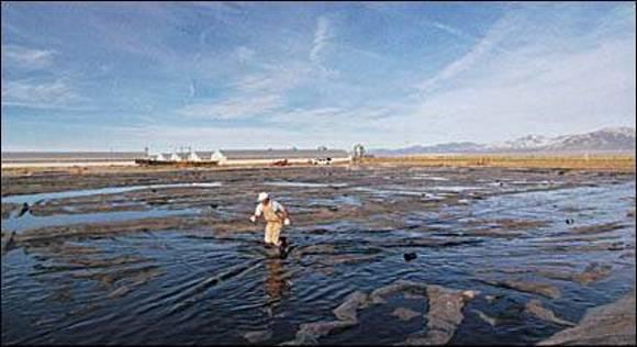 waste-lagoon.jpg